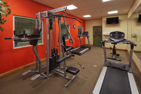 Fitness center with two treadmills and a multi-gym