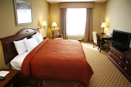 Prattville hotel room with a king bed, a flat-screen TV and a work desk