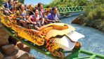 Busch Gardens Package