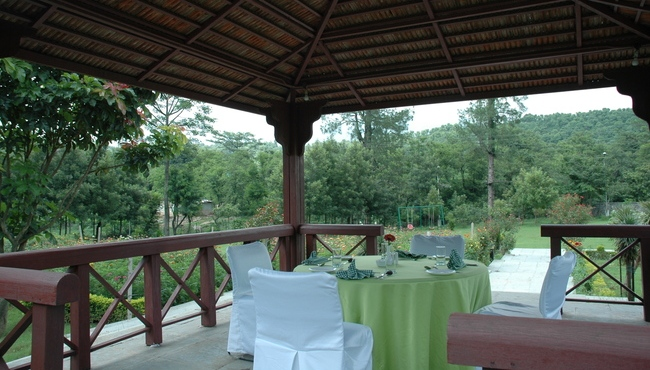 Dining Under the Wooden Hut