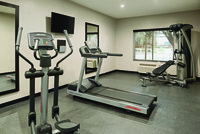 Fitness center with exercise machines and free weights