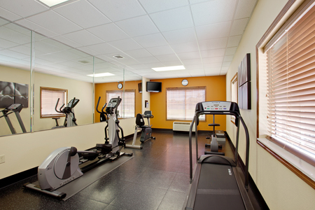 Cardio machines, a TV and mirrors in the fitness room