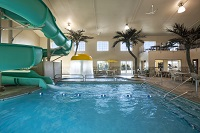 Indoor pool area with waterslide and three palm trees
