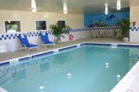 Indoor pool with aquatic mural on the wall