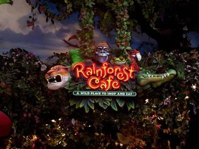Visit Rainforest Cafe