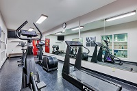 Cardio machines, a TV and mirrors in the fitness center