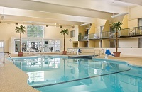Indoor pool area with potted palm trees