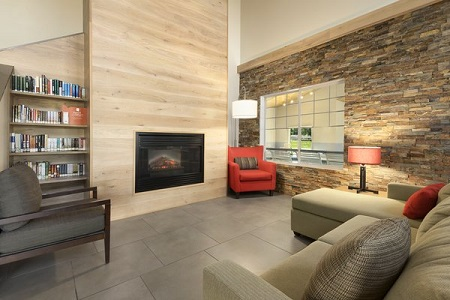 Modern hotel lobby featuring a fireplace, a library and a plush sectional