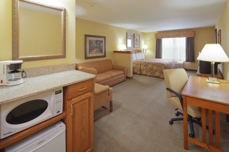 Suite with microwave, seating area and queen bed