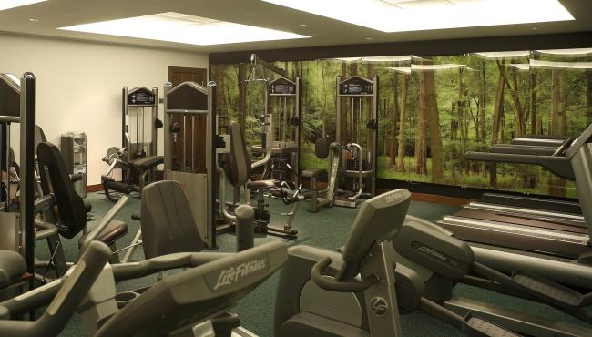 London Hotel With Sauna Park Plaza Fitness Recreation