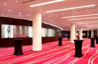 Plaza Suite with elegant pillars and pink carpet