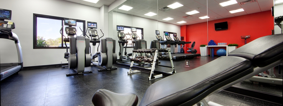 Exercise bikes and free weights in hotel fitness center