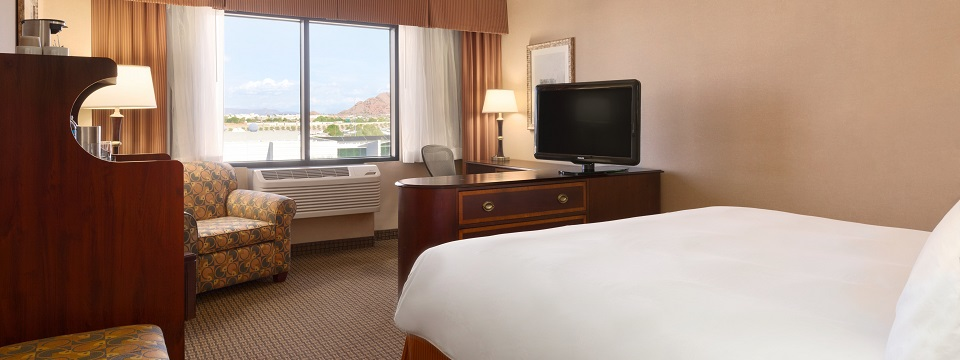 Phoenix Airport Hotel Room with King Bed, Workstation and Flat-screen TV