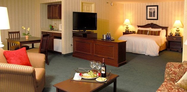 Studio Suite With A Living Area And Kitchenette