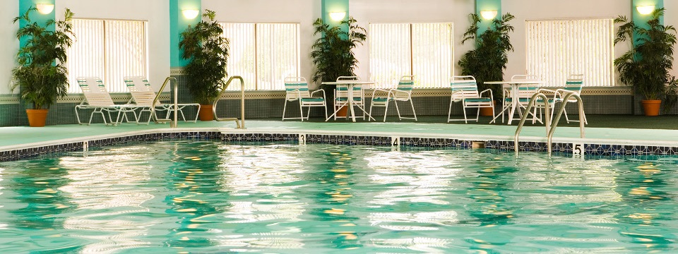 Chelmsford hotel's indoor pool surrounded by plants and deck chairs