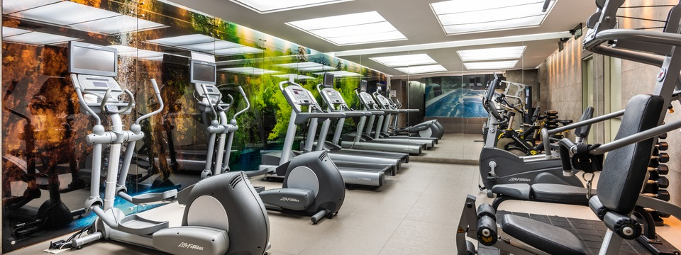 Fitness center with treadmills, ellipticals and weight equipment