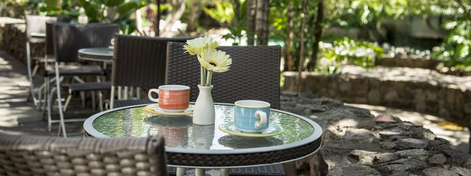 Glass table with two coffee mugs in our garden sitting area