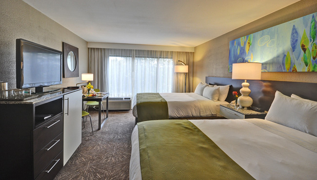 Comfortable Hotel Rooms