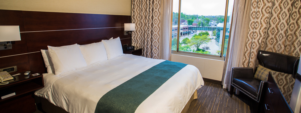 Hotel room with king-size bed and view of Moline
