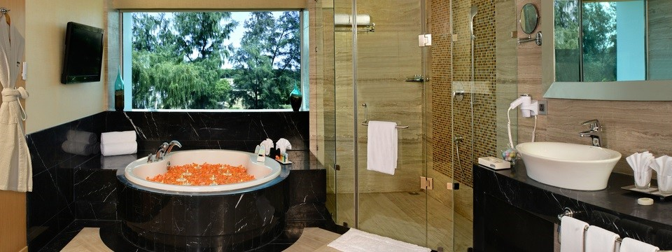 Room with whirlpool and glass-enclosed shower