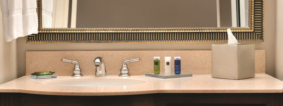 Bathroom counter with amenities