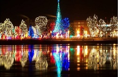 Rotary Lights Spectacular Rates