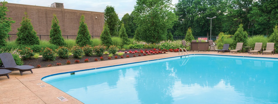 Sparkling outdoor pool and pretty landscaping