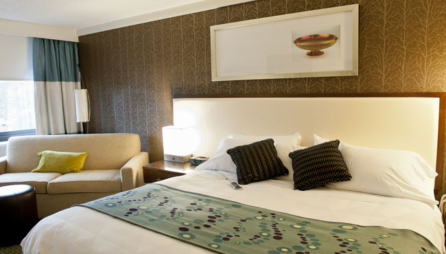 Premium Room with King Bed and Sleeper Sofa