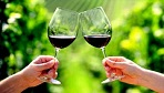 Half-Day Wine Tour Package