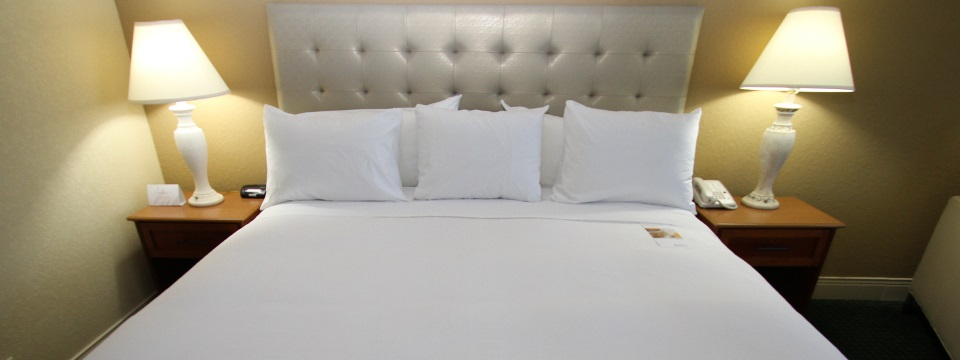 Plush king bed in Rochester hotel room