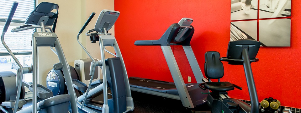 Cardio machines in the fitness centre