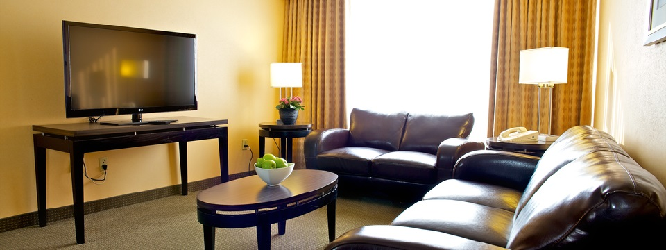 Suite includes sofa, loveseat and coffee table