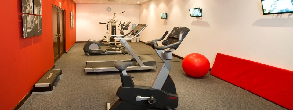 Fitness center with treadmill, exercise ball and an elliptical