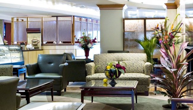 Relax in the Lobby