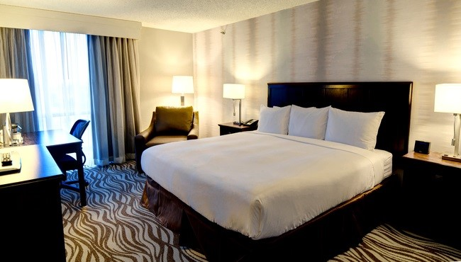 Newly Renovated Guest Rooms