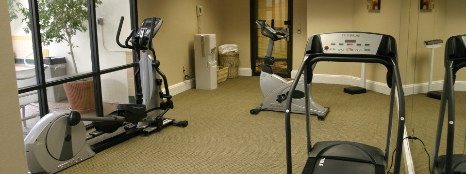 Fitness center with elliptical and treadmills