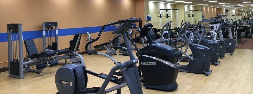 Ellipticals and weight machines in fitness center