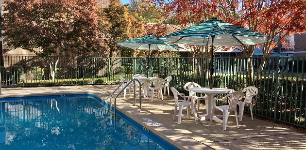 Outdoor pool with umbrella seating in Sheffield