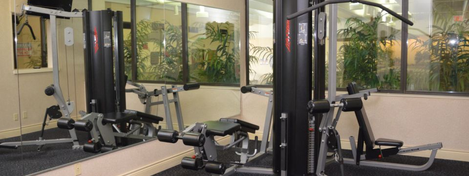 Fitness center with multifunctional weights machine
