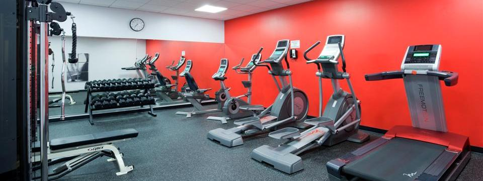 Fitness center with treadmill, ellipticals and free weights